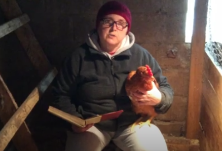"CSD Storytime- Mrs. Karen Dums reads ""Little Red Hen & The Grains of Wheat"" By: L R Hen  & ""The Story of Ferdinand"" By: Robert Lawson"